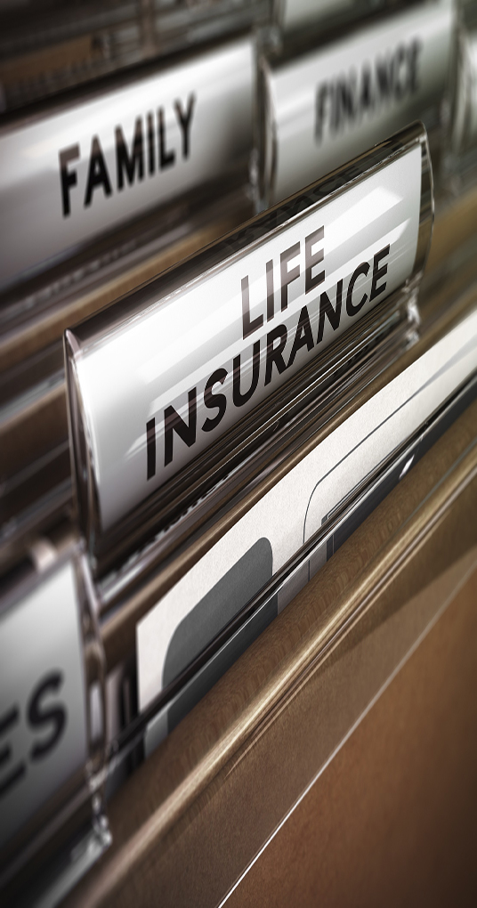 Close up on a file tab with the word life insurance, focus on the main text and blur effect. Concept image for illustration of family protection policy